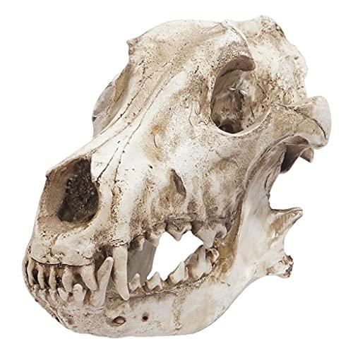 Gazechimp Animal Skull Sculpture Ornament Figurine Place Halloween Living Room Decor