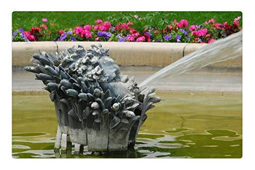 Indoor Floor Rug/Mat (23.6 x 15.7 Inch) - Fountain Water Paris French France Park Spray