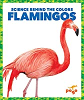 Flamingos (Science Behind the Colors)