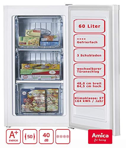 Amica GS 15696 W Gefriergerät / 64 liters