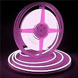 iNextStation LEDネオンライト 12V 5m SMD 2835 120LEDs/m 高輝度 防水 調光可能 切断可能 (電源アダプタ含まれません)「ピンク」