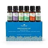 Plant Therapy Breathe Easy Essential Oil Set - Lavender, Eucalyptus, Peppermint, Lemongrass, Orange Sweet, Tea Tree, 100% Pure, Aromatherapy, Therapeutic Grade 10 mL (1/3 oz)