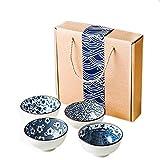 Juego de cuencos de porcelana azul y blanco con 2 pares de palillos de porcelana japonesa estilo chino juego de 2 cuencos para fideos de sushi, vajilla de cerámica y vajilla