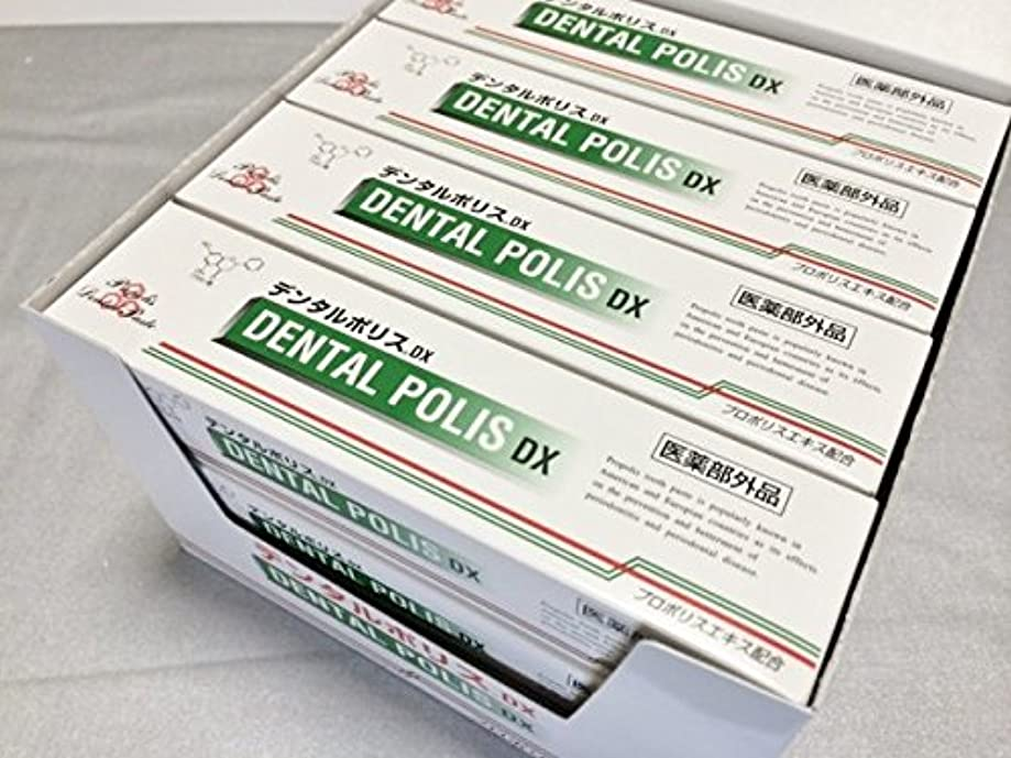 計画的ガイドライン緊張デンタルポリス DX 12本セット 医薬部外品
