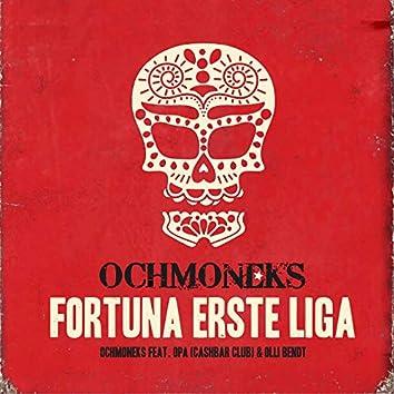 Fortuna Erste Liga (Radio edit)