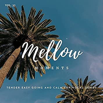 Mellow Moments - Tender Easy Going And Calm Pop Vocal Songs, Vol. 37