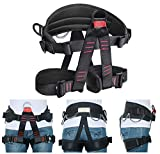 HEEJO Thicken Climbing Harness, Professional Mountaineering Safety Harness/Belt with 4 Equipment Rings, Widen Harness for Rock Climbing Outward Bound SRT Fire Rescuing Large Size