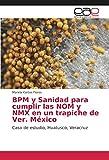 BPM y Sanidad para cumplir las NOM y NMX en un trapiche de Ver. México: Caso de estudio, Huatusco, Veracruz