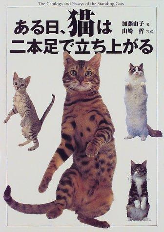 ある日、猫は二本足で立ち上がるの詳細を見る