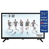 TV METZ 24'' (60 cm) LED HD Android TV 9.0 (Netflix, Prime Video, Disney+, MyCanal, OCS, Apple TV, …) Wi-FI avec Tuners DVB-T2/C/S2 - Série MTC6