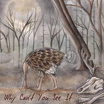 Why Can't You See It