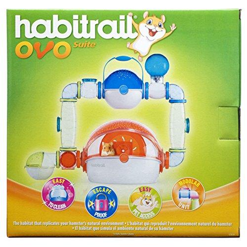 Habitrail Ovo Suite Jaula para hámster, OVO Suite y OVO Mini Laberinto