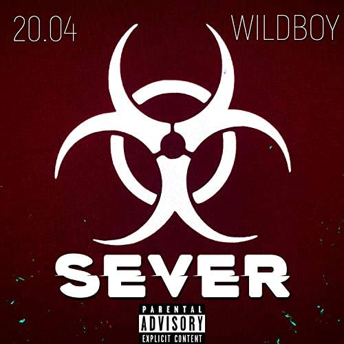 20.04 & Wildboy