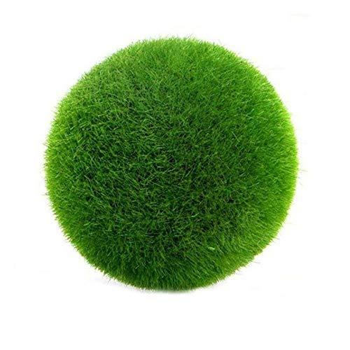 Pinkdose DIY Topfpflanze Moos Kugeln Grüne Pflanze Innendekoration Fotografie Requisiten Neuartige Pflanze Bonsai: A
