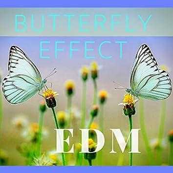 Butterfly Effect Edm