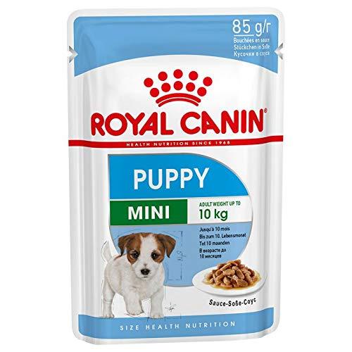 Royal Canin- 6X Mini Puppy in Soße für kleine Welpen Nassfutter