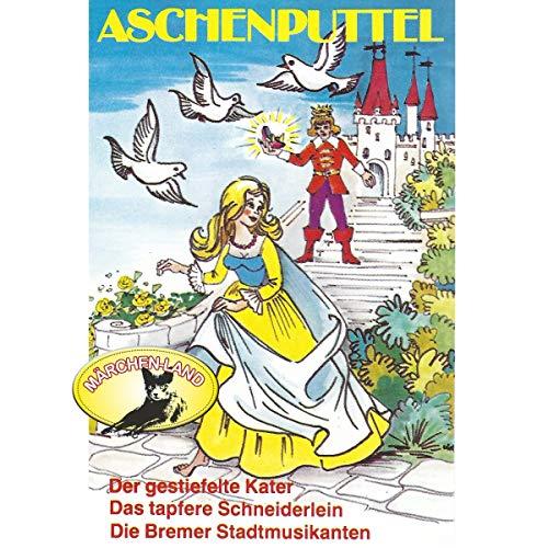 『Aschenputtel und weitere Märchen』のカバーアート