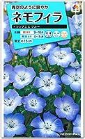 ネモフィラ 種子 インシグニスブルー 1ml(育苗可能本数:およそ150本)