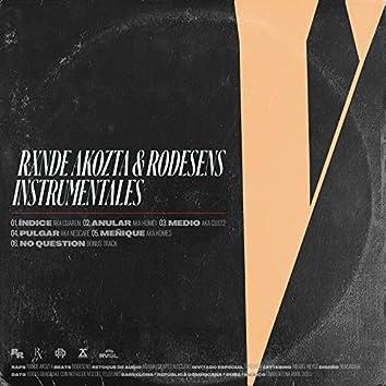 V  Instrumentales