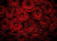 GooEoo 9x6ft咲く赤いバラ背景花写真背景恋人女の子子供写真ビデオスタジオ小道具結婚式家族パーティー誕生日背景ベビーシャワー装飾ビニール素材