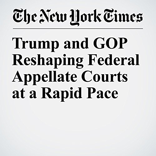 Trump and GOP Reshaping Federal Appellate Courts at a Rapid Pace copertina