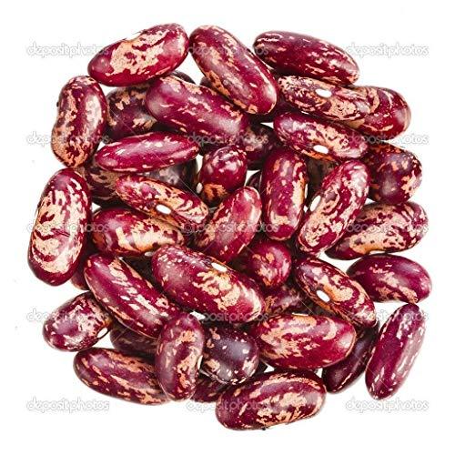 Dominikanische rot gesprenkelte Kidneybohnen (£ 1/4 Samen) - Habichuelas Guisadas