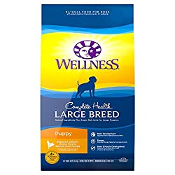 Wellness Natural Dog Food