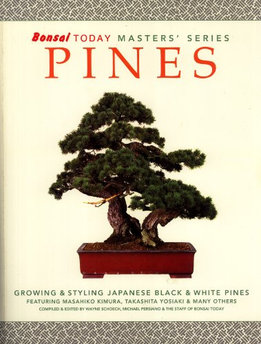 Bonsai Today Masters' Series: Pines, Growing & Styling Japanese Black & White Pines featuring Masahiko Kimura, Takashita Yosiaki & Many Others