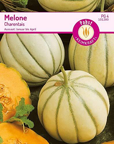 Carl Pabst 101280 Melone Charentais...