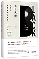 The black flame: A History of the Twentieth Century African-American Novels (Chinese Edition)