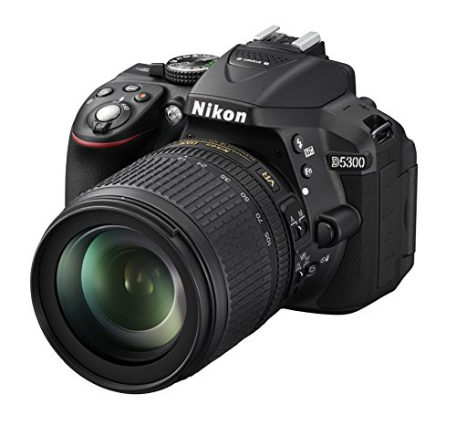 Nikon D5300 - Cámara réflex de 24.2 MP (Pantalla TFT LCD inclinable 3.2