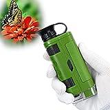 Microscopio de Mano portátil 80~120x para niños y Principiantes, Mini microscopio de Bolsillo con Adaptador para teléfono móvil(Verde)