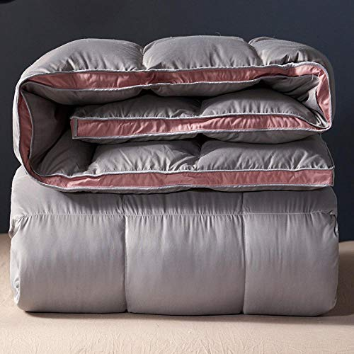 CHOU DAN Twin Duvet Insert,Duvet 95 White Goose Down Winter Quilt Thickened Winter Spring And Autumn Quilt Double Single Student Dormitory Quilt White Duck Down-Gray_180x220 6 Kg