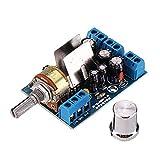 ROUHO TEA2025B Mini Audio Amplificador Tablero Dual Stereo 2.0 Channel Amplificador Tablero para PC Altavoz 3W + 3W 5V 9V 12V Car