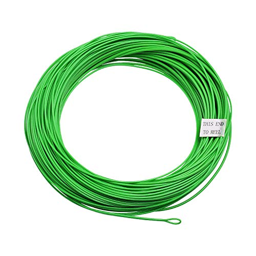 SF Weight Forward Floating Line Fly Fishing Line Welded Loop Green 100FT WF6F …