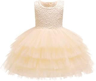ZEVONDA Infant Girls Pretty Dress - Embroidered Simple Cute Baby Girl Fashion Casual Birthday Party Tutu Dress