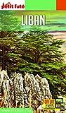 Guide Liban Petit Futé