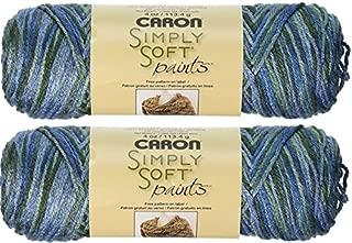 Best caron paints yarn Reviews