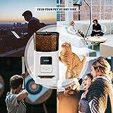 Zoom IMG-2 socio distributore cibo per cani