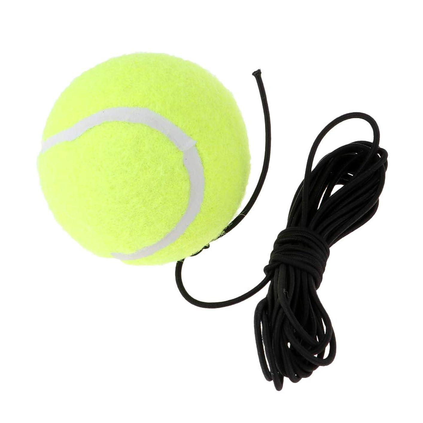 検索エンジンマーケティング飲み込む側面D DOLITY テニストレーナーボール テニス練習ボール 替えボール ひも付き