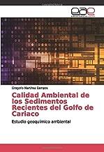 Calidad Ambiental de los Sedimentos Recientes del Golfo de Cariaco: Estudio geoquímico ambiental (Spanish Edition)