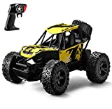 Gasince RC Cars for Boys Age 8-12, High Speed Remote Control Car, 2.4 GHZ Aluminium Alloy Off Road Monster Trucks with Two Rechargeable Batteries Gifts for Kids Adults, Yellow