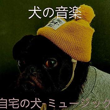 自宅の犬-ミュージック