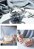 Espesar Vidrio Templado de Desayuno Taza con Tapa de Cuchara de Leche de Soja, café, harina de Avena Ensalada de Frutas de Postre merienda Taza Transparente Saludable