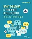 Droit d'auteur et propriété intellectuelle dans le numérique - 3E EDITION
