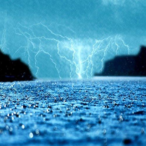 Pluie : Conduire Sous la Pluie, le Tonnerre, se Cachant sous un Arbre (Rainfall meditations)