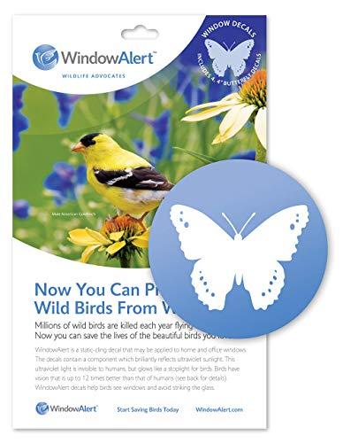 Stickers pour fenêtre Alerte Papillon