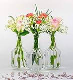 casavetro - Jarrones pequeños de Cristal HALSI, Botellas de Cristal, Estilo rústico, Vintage, jarrón de Cristal, Transparente, Mini Botellas Decorativas (6,12), 12 Unidades