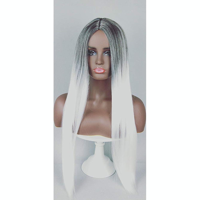 コーチ薬局生物学ファッション女性用ウィッグ、ナチュラルロングストレートグラデーションヘアラインヘアセット、パーティーロールプレイングウィッグ