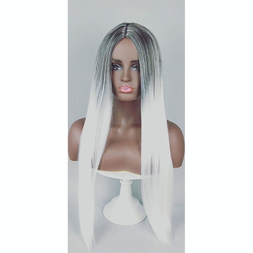 ほのめかすトランペット水っぽいファッション女性用ウィッグ、ナチュラルロングストレートグラデーションヘアラインヘアセット、パーティーロールプレイングウィッグ
